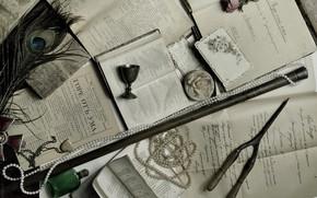 Картинка ретро, перо, книги, розы, ожерелье, кулон, рюмка, Грибоедов, пьеса