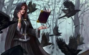 Обои лес, деревья, птицы, магия, фэнтези, арт, капюшон, вороны, книга, ведьма