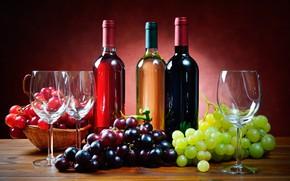 Картинка стол, вино, бокалы, виноград, бутылки, сорта