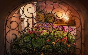Обои цветы, обработка, арка, тюльпаны