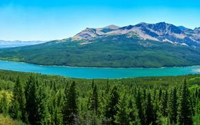 Картинка лес, небо, деревья, горы, озеро, панорама, США, Glacier National Park, Saint Mary Lake, Глейшер, Сент-Мэри-Лейк
