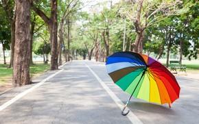 Картинка дорога, лето, деревья, парк, радуга, зонт, colorful, rainbow, summer, аллея, umbrella, park