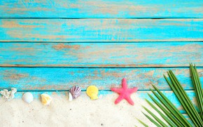 Картинка песок, пляж, фон, доски, звезда, ракушки, summer, beach, wood, sand, marine, starfish, seashells