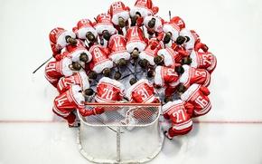 Картинка спорт, команда, хоккей