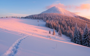 Обои пейзаж, рассвет, тропинка, мороз, снег, свет, лучи, простор, облака, вершина, следы, лес, холмы, ели, тени, ...