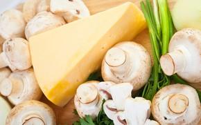 Картинка грибы, сыр, шампиньоны