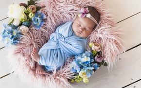 Обои цветы, сон, спит, девочка, корзинка, малышка