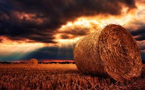 Обои пейзаж, небо, лето, злаки, урожай, солома, панорама, золотой, природа, солнечный луч