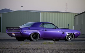 Картинка Dodge Challenger, muscle car, purple, 1070