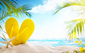 Обои песок, море, пляж, лето, солнце, пальмы, отдых, summer, beach, каникулы, sand, сланцы, vacation, starfish