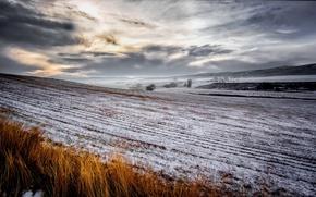Картинка поле, лето, снег