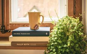 Картинка книги, окно, чашка, вазон, чай душистый, подоконик