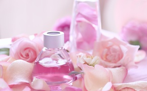Картинка духи, лепестки, rose, pink, petals, розовые розы, spa, oil, parfume