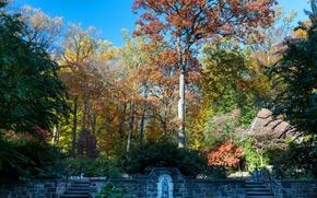 Картинка осень, солнце, деревья, парк, лестницы, США, кусты, Nemours Mansion and Gardens