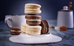 Картинка кофе, печенье, чашка, крем, десерт, выпечка, sweet, coffee cup, cookies, macaron, almond, макаруны