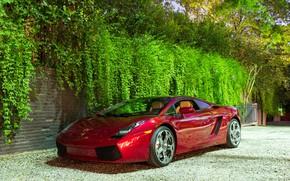 Обои Lamborghini, wheels, Red, Gallardo, hrome