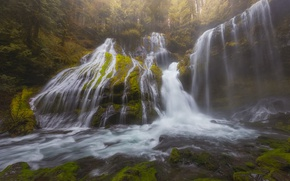 Картинка лес, водопад, каскад, Washington, штат Вашингтон, Columbia River Gorge, Panther Creek Falls, Gifford Pinchot National …