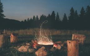 Обои камни, звезды, небо, лес, колоды, вечер, ели, костер, деревья, сосны