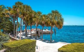 Картинка море, небо, солнце, пальмы, побережье, Майами, Флорида, США