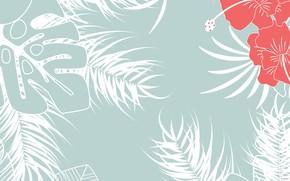 Картинка Цветы, Листья, Текстура, Гибискус