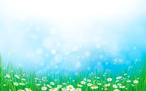 Картинка трава, ромашки, луг