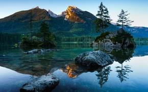 Картинка лес, деревья, горы, река, камни, Германия, Бавария, Berchtesgaden