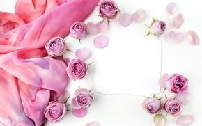 Картинка розы, бутоны, pink, flowers, romantic, roses