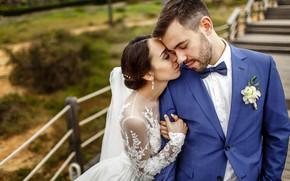 Картинка любовь, поцелуй, платье, невеста, свадьба, жених