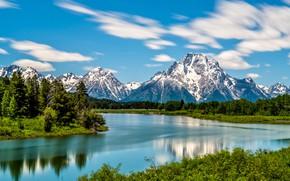 Картинка лес, горы, река, Вайоминг, Wyoming, Grand Teton National Park, Скалистые горы, Река Снейк, Snake River, ...