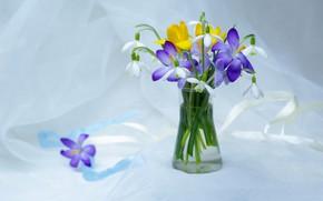 Картинка цветы, нежность, красота, растения, весна, подснежники, крокусы, натюрморт, первоцветы, букетик, композиция, флора, букеты, галантус, апрель