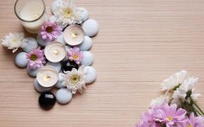 Картинка камни, свечи, хризантемы, Спа
