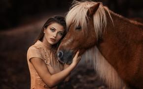 Картинка макияж, губки, лошадка, Alessandro Di Cicco, The Pony