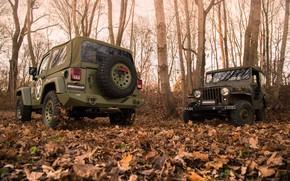 Картинка деревья, листва, бампер, 4x4, Jeep, Willys MB, мягкий верх, Geiger-Willys Limited Edition, запасное колесо