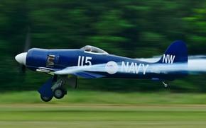 Обои ретро, Hawker Sea Fury, FB MK11, четыре пушки 20-мм, ракеты НУРС, двигатель 1-2560 л.с., самолет, ...