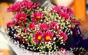 Картинка фон, букет, цветочки
