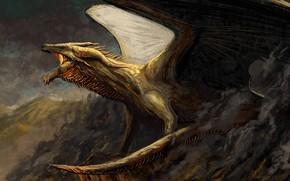 Картинка горы, дракон, крылья, мощь, фэнтези, арт, пасть