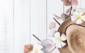 Картинка пляж, лето, цветы, отдых, звезда, отпуск, шляпа, ракушки, summer, happy, beach, flowers, vacation, плюмерия, plumeria, …