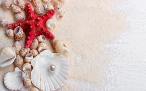 Картинка песок, звезда, ракушки, wood, sand, marine, still life, жемчужина, starfish, seashells, perl