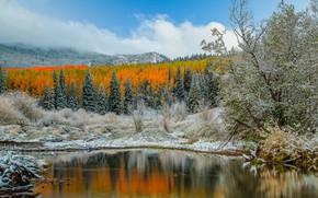Картинка осень, горы, озеро, Колорадо, США, Аспен