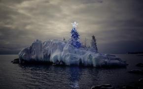 Картинка море, праздник, вечер, ёлка