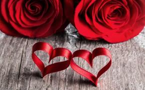 Обои любовь, сердце, розы, лепестки, пара, red, love, heart, romantic, Valentine's Day, petals, roses