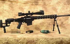 Картинка Ruger, caliber 6.5, Precision Rifle
