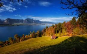 Обои Lake Thun, осень, Бернские Альпы, Тунское озеро, озеро, деревья, Switzerland, Bernese Oberland, Бернский Оберланд, горы, ...