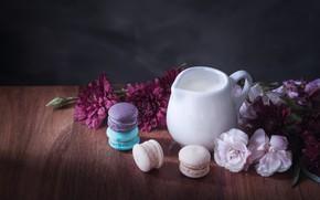 Картинка цветы, colorful, молоко, кувшин, десерт, flowers, пирожные, сладкое, sweet, dessert, milk, macaroon, french, macaron, макаруны