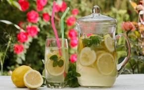 Картинка Лимон, Напиток, Мята