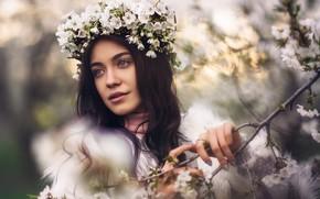 Картинка девушка, цветы, ветка, весна, брюнетка, цветение, венок, цветки, боке, Чавдар Димитров