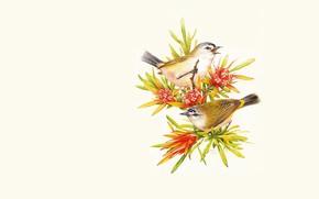 Картинка веточка, арт, птичка
