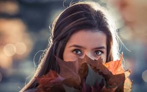 Обои листья, девушка, портрет