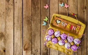 Картинка бабочки, весна, Пасха, wood, spring, Easter, purple, eggs, decoration, Happy, яйца крашеные