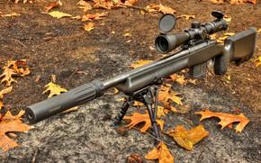 Обои оптика, винтовка, Daniel Defense